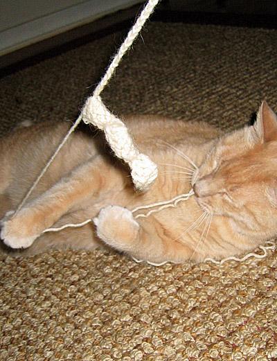 Jeff crochets